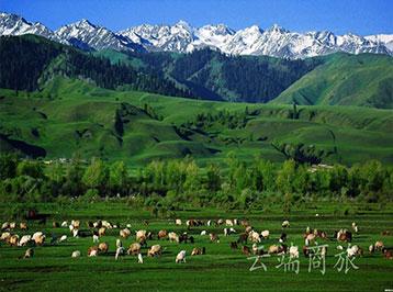 新疆伊犁+赛里木湖+那拉提旅游风景区4日3晚私家团